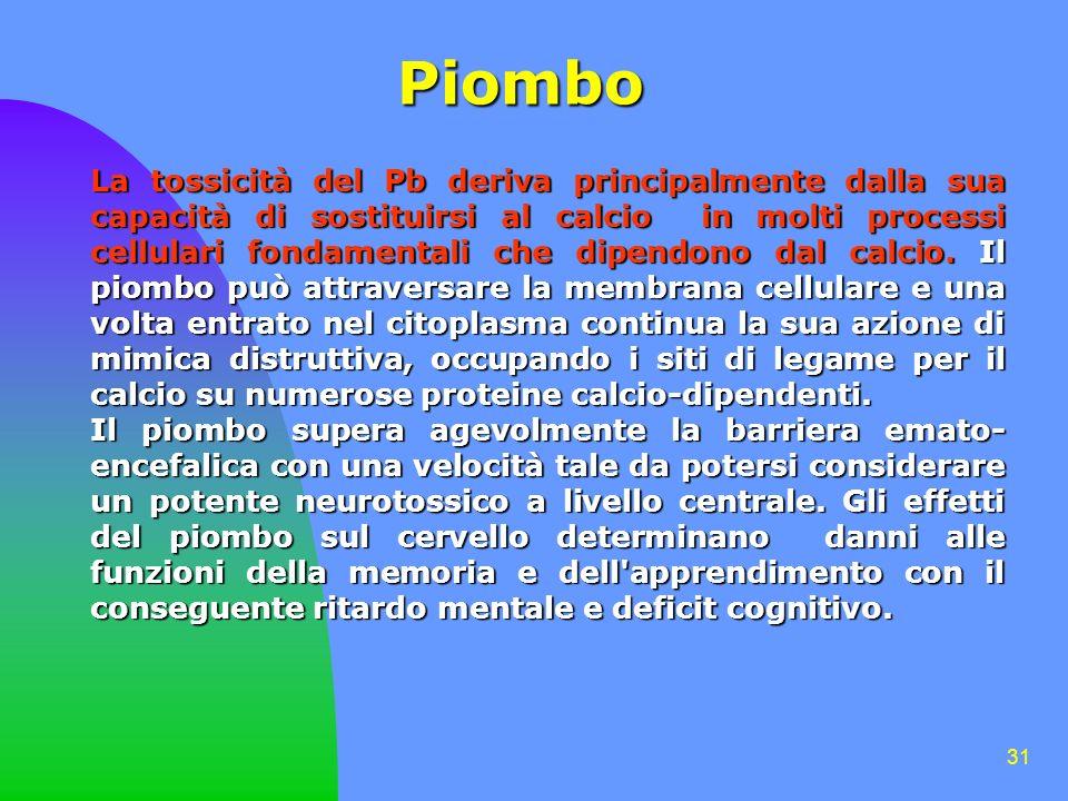 31 Piombo La tossicità del Pb deriva principalmente dalla sua capacità di sostituirsi al calcio in molti processi cellulari fondamentali che dipendono dal calcio.
