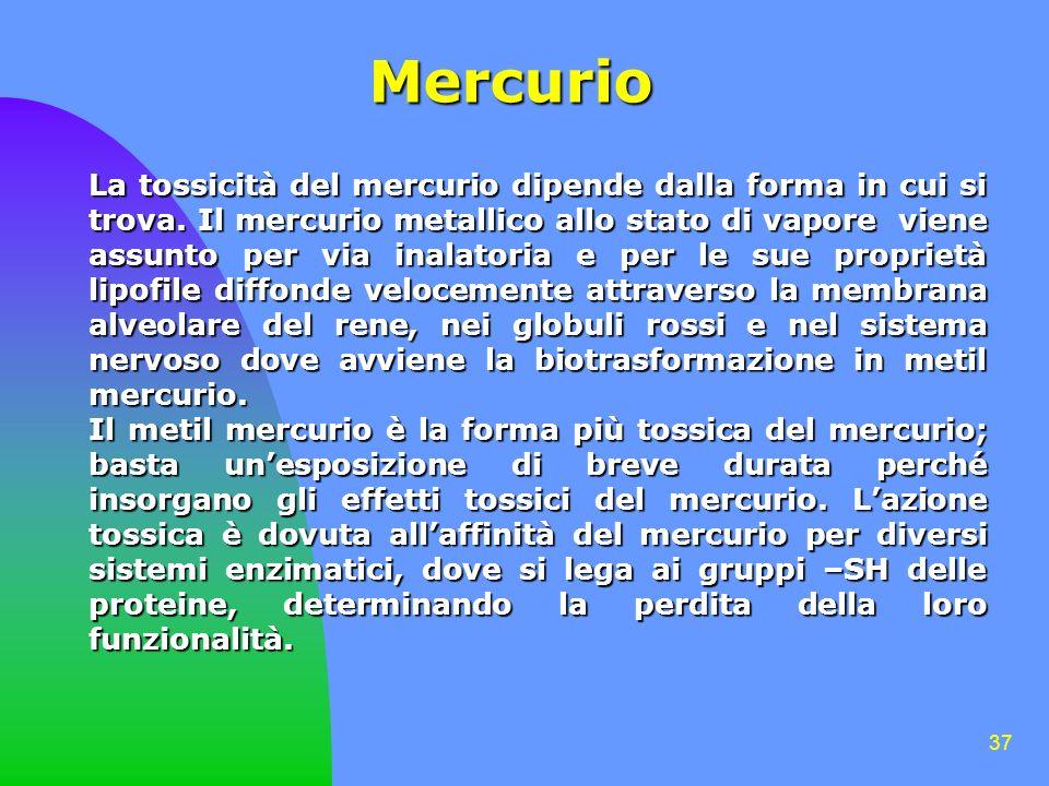 37 Mercurio La tossicità del mercurio dipende dalla forma in cui si trova. Il mercurio metallico allo stato di vapore viene assunto per via inalatoria