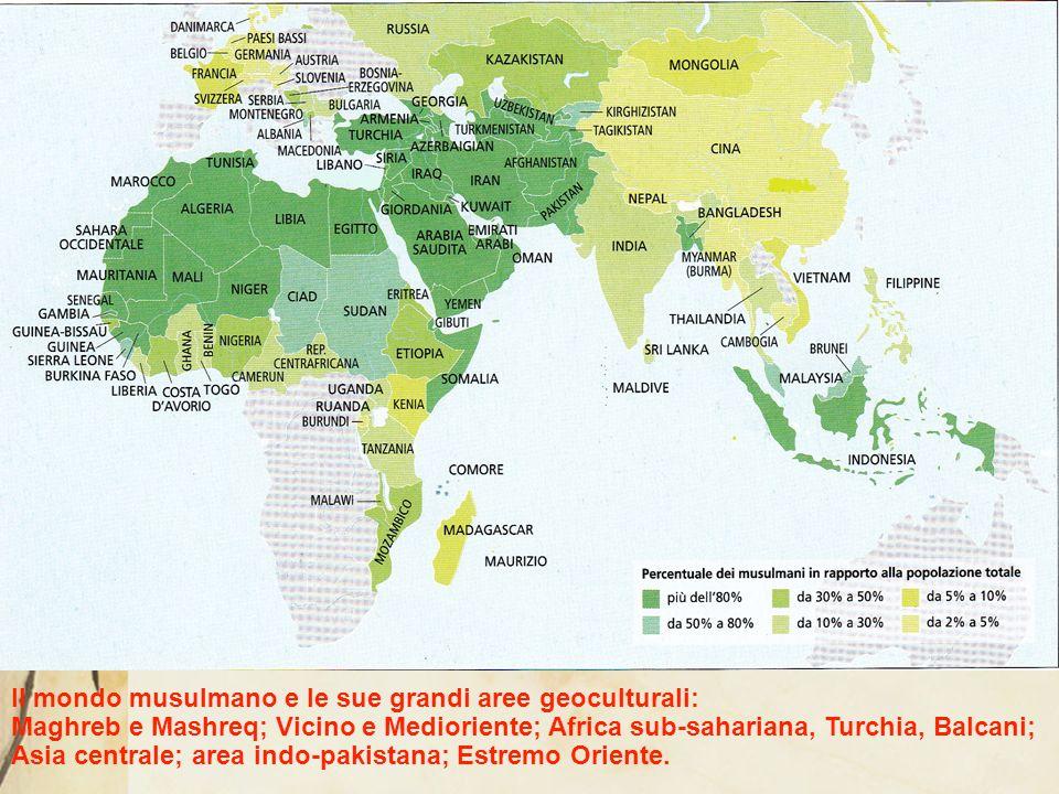 Il mondo musulmano e le sue grandi aree geoculturali: Maghreb e Mashreq; Vicino e Medioriente; Africa sub-sahariana, Turchia, Balcani; Asia centrale; area indo-pakistana; Estremo Oriente.