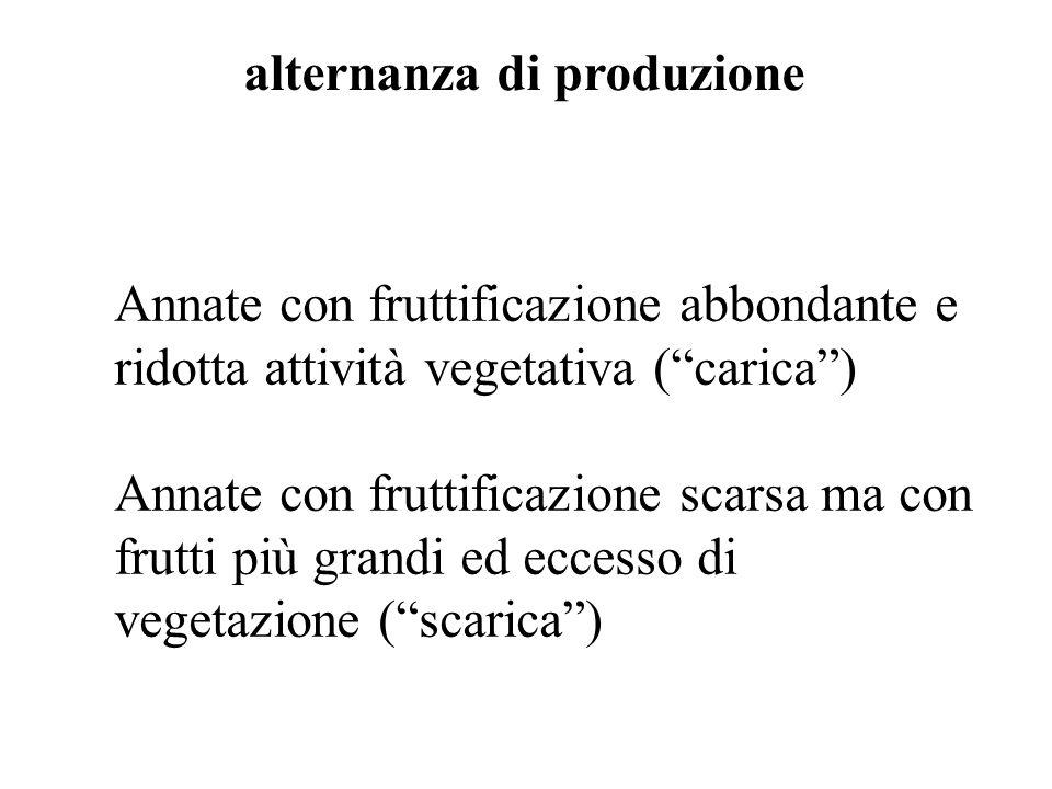 Annate con fruttificazione abbondante e ridotta attività vegetativa (carica) Annate con fruttificazione scarsa ma con frutti più grandi ed eccesso di vegetazione (scarica) alternanza di produzione