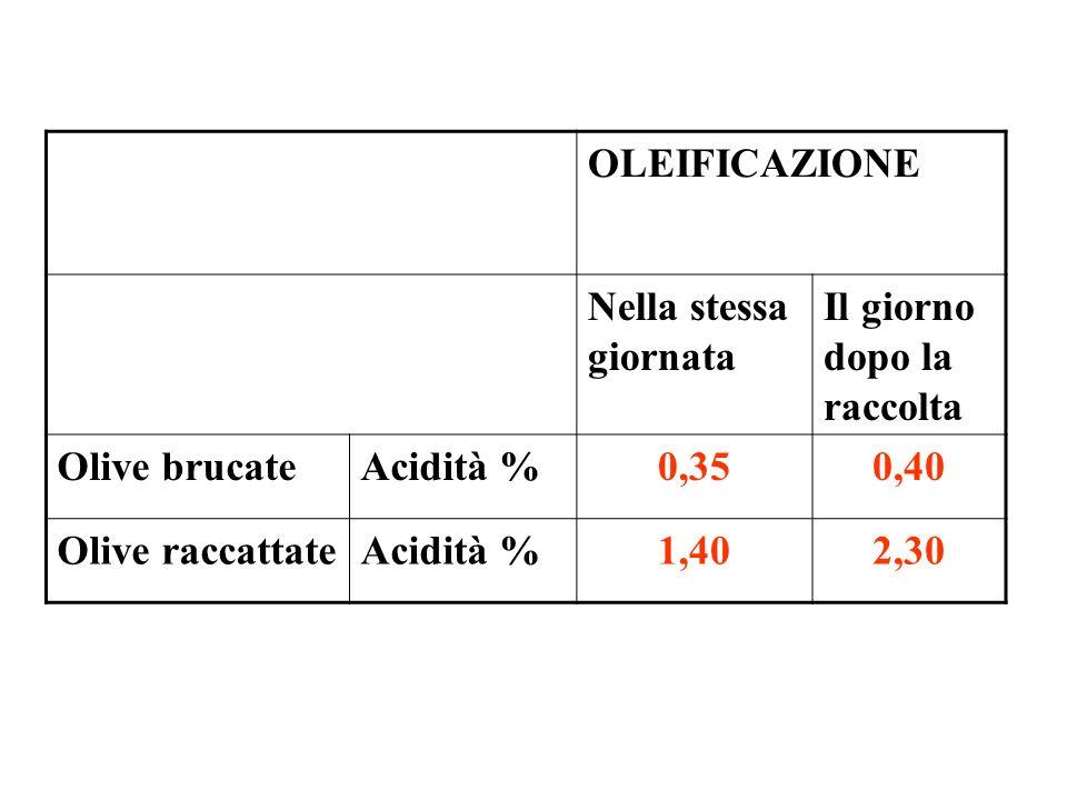 OLEIFICAZIONE Nella stessa giornata Il giorno dopo la raccolta Olive brucateAcidità %0,350,40 Olive raccattateAcidità %1,402,30