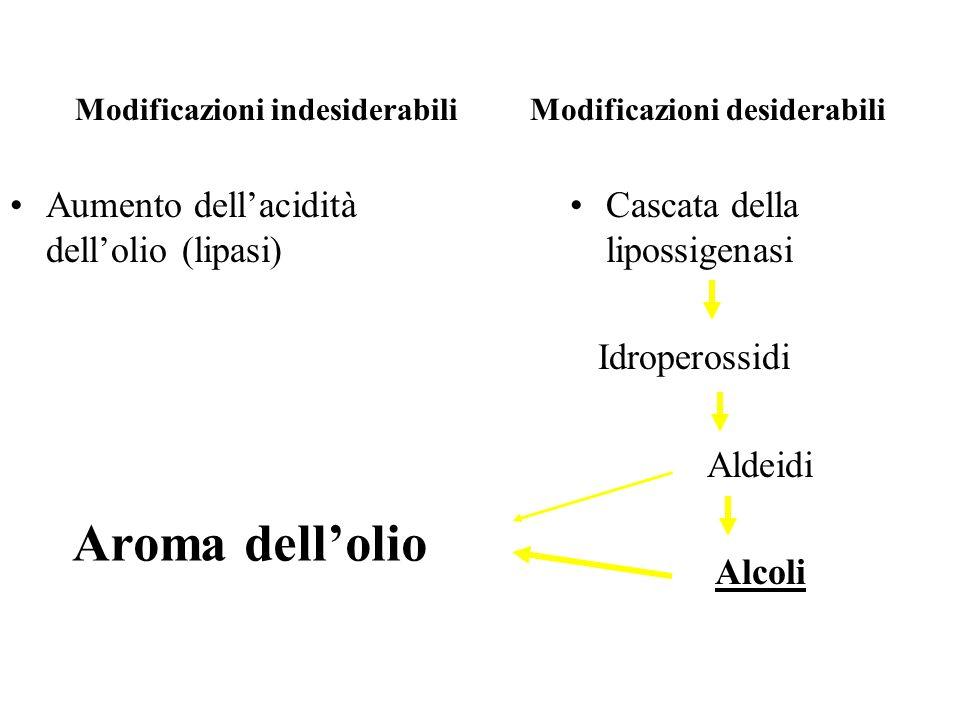 Modificazioni indesiderabili Modificazioni desiderabili Aumento dellacidità dellolio (lipasi) Cascata della lipossigenasi Idroperossidi Aldeidi Alcoli Aroma dellolio
