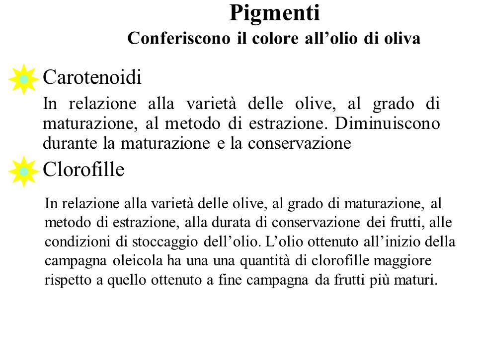 Pigmenti Conferiscono il colore allolio di oliva Carotenoidi In relazione alla varietà delle olive, al grado di maturazione, al metodo di estrazione.