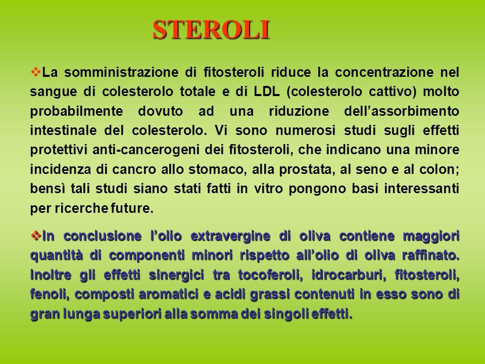 La somministrazione di fitosteroli riduce la concentrazione nel sangue di colesterolo totale e di LDL (colesterolo cattivo) molto probabilmente dovuto ad una riduzione dellassorbimento intestinale del colesterolo.