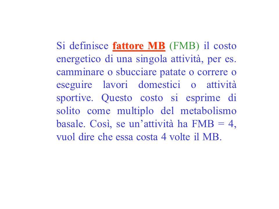 fattore MB Si definisce fattore MB (FMB) il costo energetico di una singola attività, per es. camminare o sbucciare patate o correre o eseguire lavori