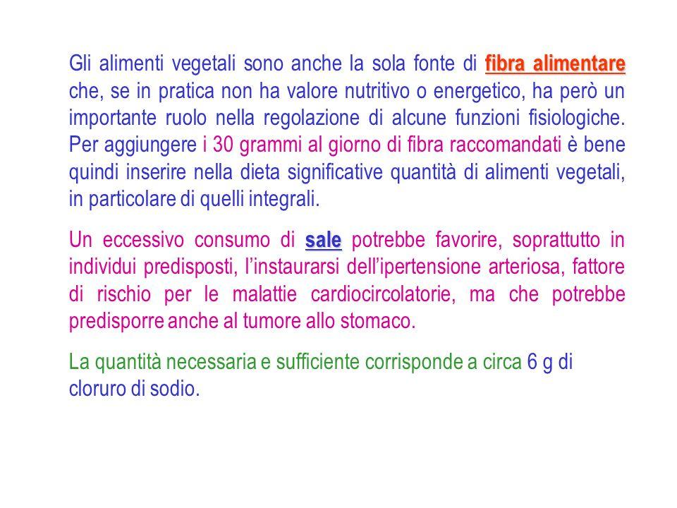 fibra alimentare Gli alimenti vegetali sono anche la sola fonte di fibra alimentare che, se in pratica non ha valore nutritivo o energetico, ha però u