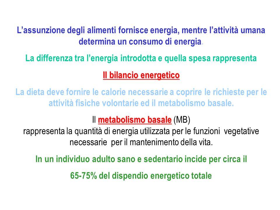Lassunzione degli alimenti fornisce energia, mentre lattività umana determina un consumo di energia. La differenza tra lenergia introdotta e quella sp