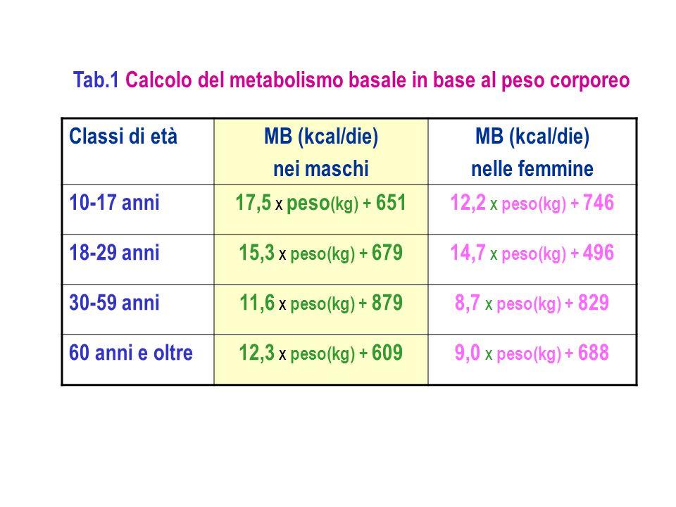 Classi di etàMB (kcal/die) nei maschi MB (kcal/die) nelle femmine 10-17 anni17,5 X peso (kg) + 65112,2 X peso(kg) + 746 18-29 anni15,3 X peso(kg) + 67
