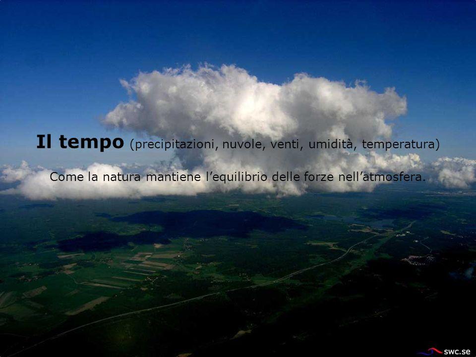 Il tempo (precipitazioni, nuvole, venti, umidità, temperatura) Come la natura mantiene lequilibrio delle forze nellatmosfera.