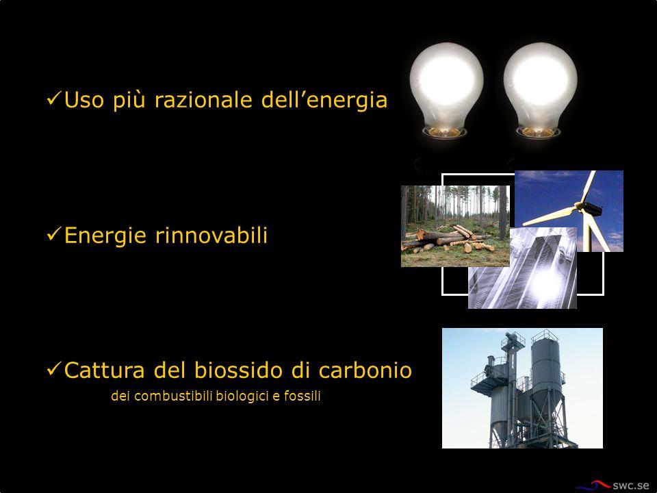 Uso più razionale dellenergia Energie rinnovabili Cattura del biossido di carbonio dei combustibili biologici e fossili