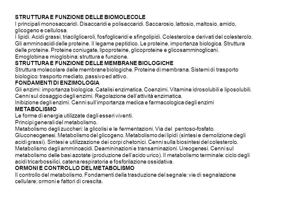 STRUTTURA E FUNZIONE DELLE BIOMOLECOLE I principali monosaccaridi. Disaccaridi e polisaccaridi. Saccarosio, lattosio, maltosio, amido, glicogeno e cel