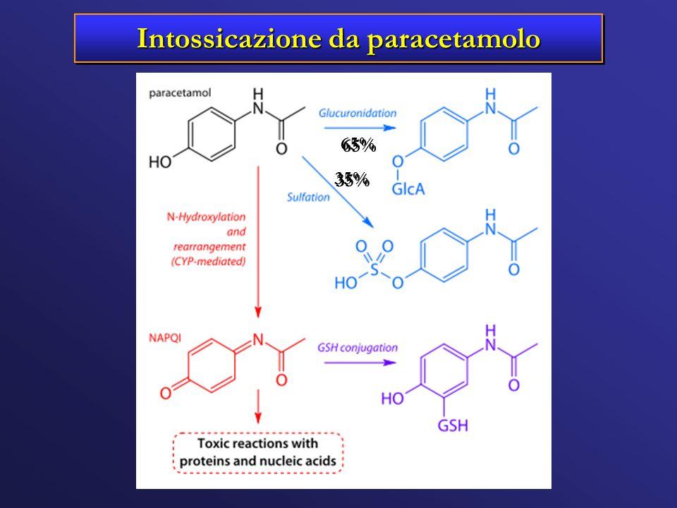 Intossicazione da paracetamolo 65% 35%