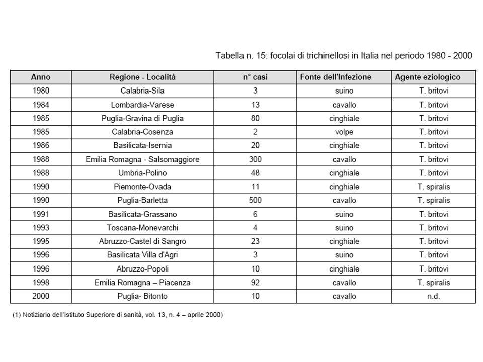 Dai Dossier alle Linee- Guida di Sanità Pubblica (2008 - …..)