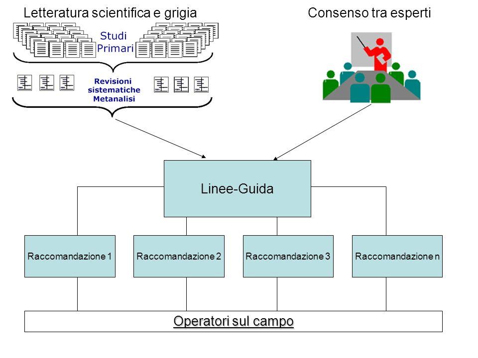Linee-Guida Raccomandazione 1Raccomandazione 2Raccomandazione 3Raccomandazione n Letteratura scientifica e grigia Consenso tra esperti Operatori sul c