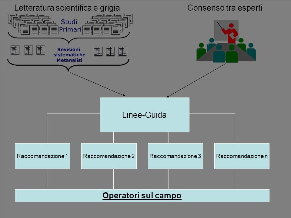 Letteratura scientifica e grigia Consenso tra esperti Linee-Guida Raccomandazione 1Raccomandazione 2Raccomandazione 3Raccomandazione n Operatori sul c