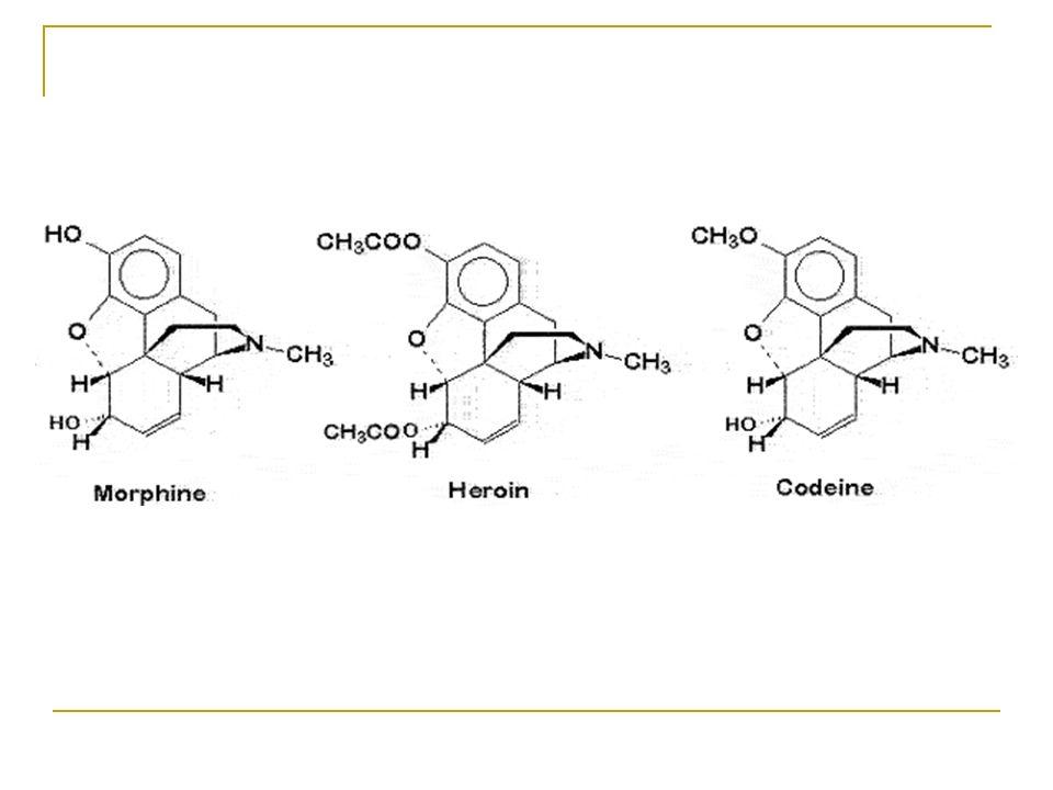 Oppioidi Oppio: sostanza lattiginosa che si condensa e si imbrunisce a contatto con laria.