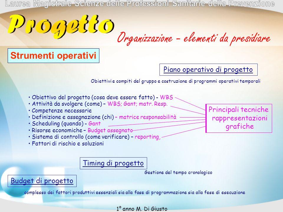 Organizzazione - elementi da presidiare Strumenti operativi Piano operativo di progetto Obiettivi e compiti del gruppo e costruzione di programmi operativi temporali Obiettivo del progetto (cosa deve essere fatto) - WBS Attività da svolgere (come) – WBS; Gant; matr.
