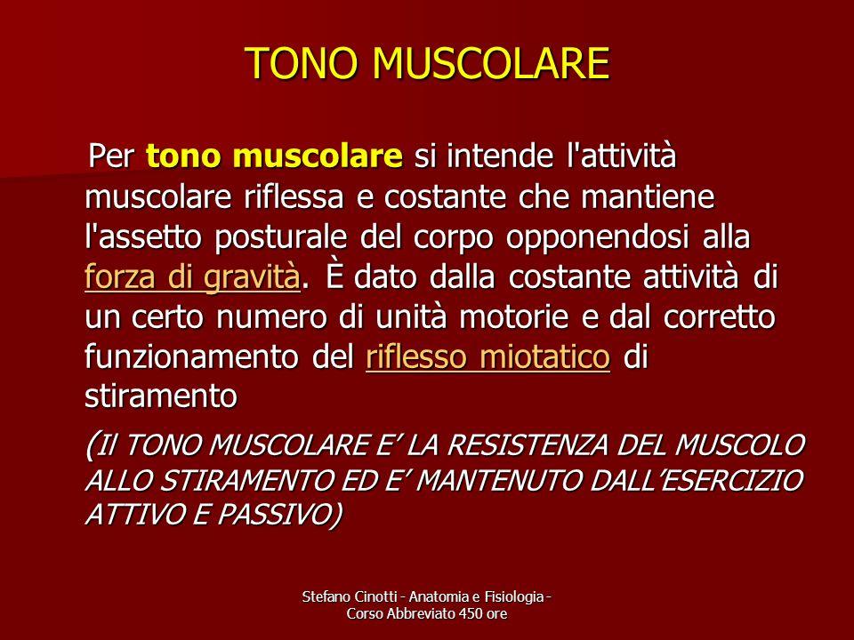 Stefano Cinotti - Anatomia e Fisiologia - Corso Abbreviato 450 ore TONO MUSCOLARE Per tono muscolare si intende l'attività muscolare riflessa e costan