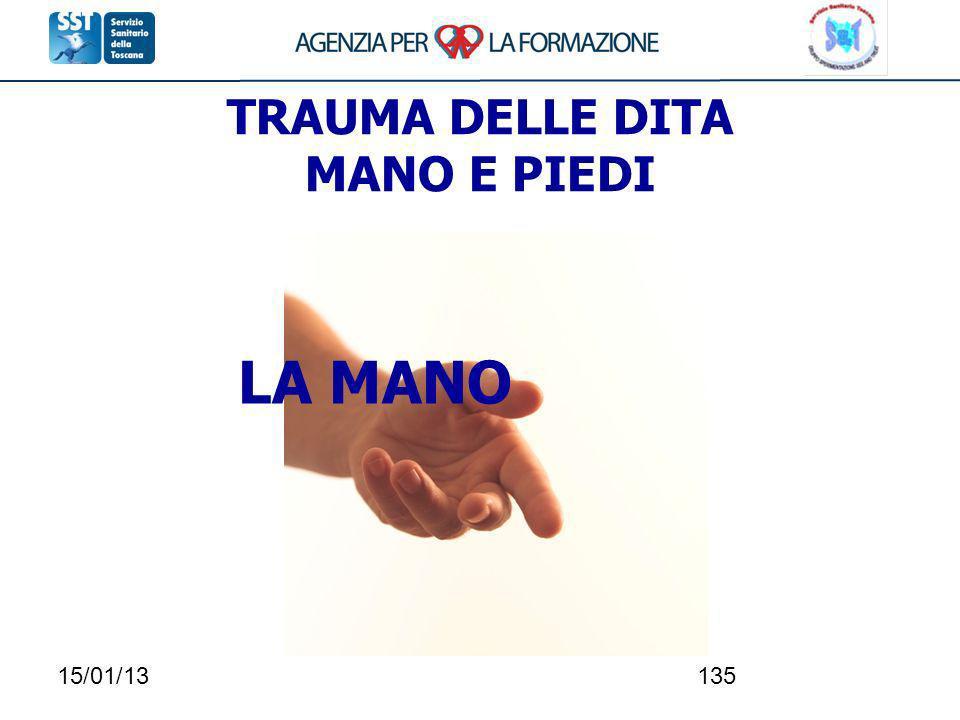 15/01/13135 TRAUMA DELLE DITA MANO E PIEDI LA MANO