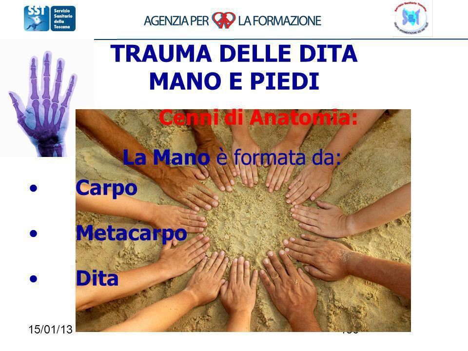 15/01/13136 TRAUMA DELLE DITA MANO E PIEDI Cenni di Anatomia: La Mano è formata da: Carpo Metacarpo Dita