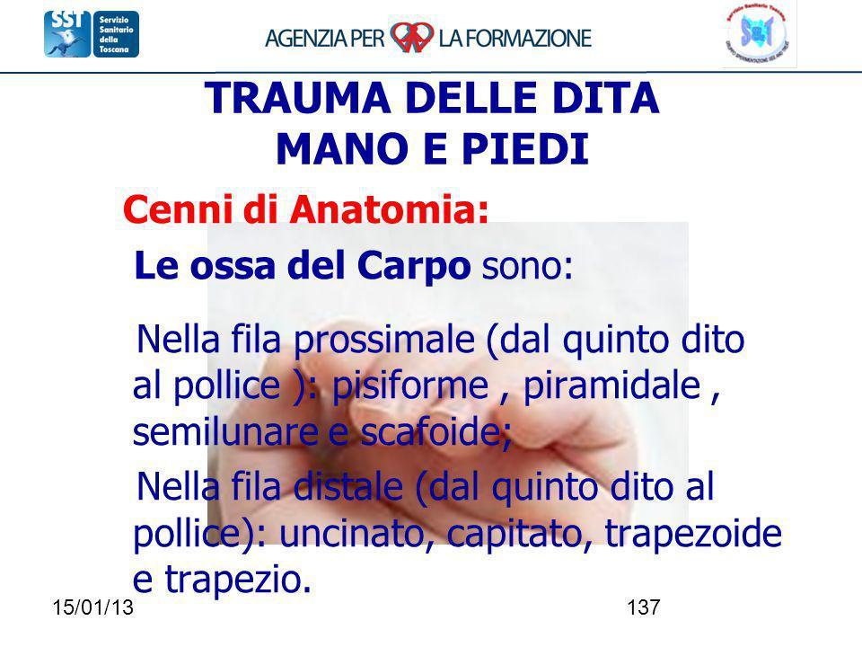 15/01/13137 TRAUMA DELLE DITA MANO E PIEDI Cenni di Anatomia: Le ossa del Carpo sono: Nella fila prossimale (dal quinto dito al pollice ): pisiforme,