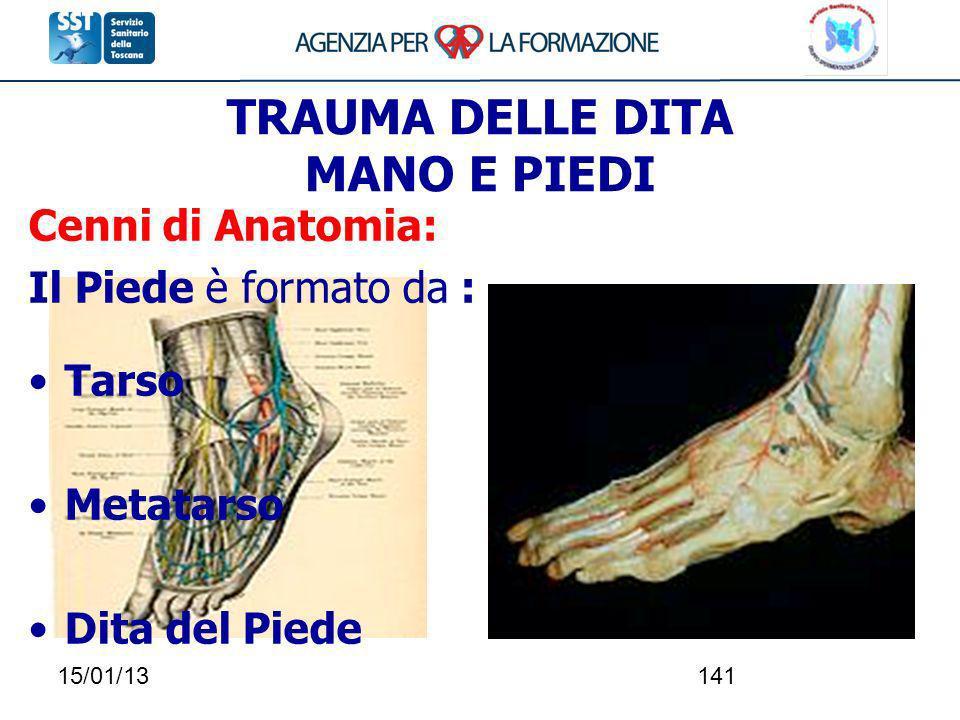 15/01/13141 TRAUMA DELLE DITA MANO E PIEDI Cenni di Anatomia: Il Piede è formato da : Tarso Metatarso Dita del Piede