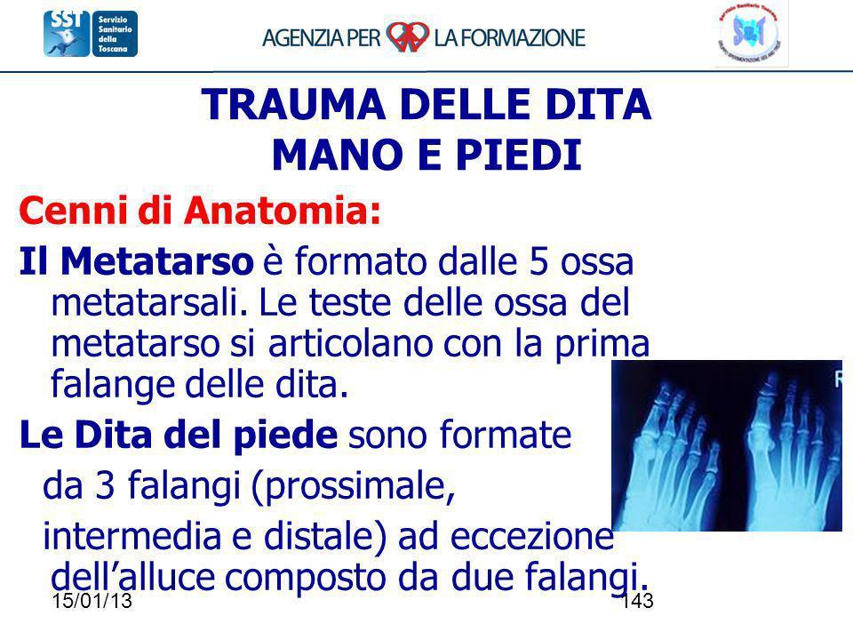15/01/13143 TRAUMA DELLE DITA MANO E PIEDI Cenni di Anatomia: Il Metatarso è formato dalle 5 ossa metatarsali. Le teste delle ossa del metatarso si ar