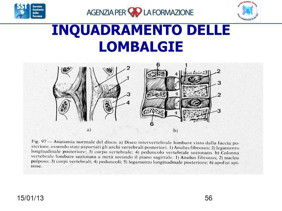 15/01/1356 INQUADRAMENTO DELLE LOMBALGIE
