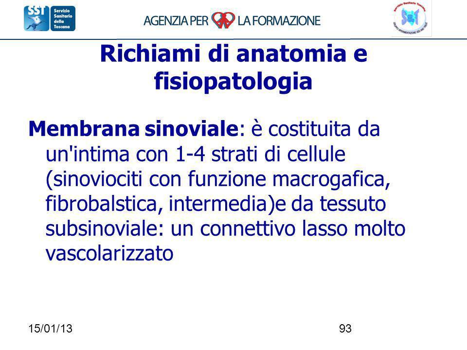 15/01/1393 Richiami di anatomia e fisiopatologia Membrana sinoviale: è costituita da un'intima con 1-4 strati di cellule (sinoviociti con funzione mac