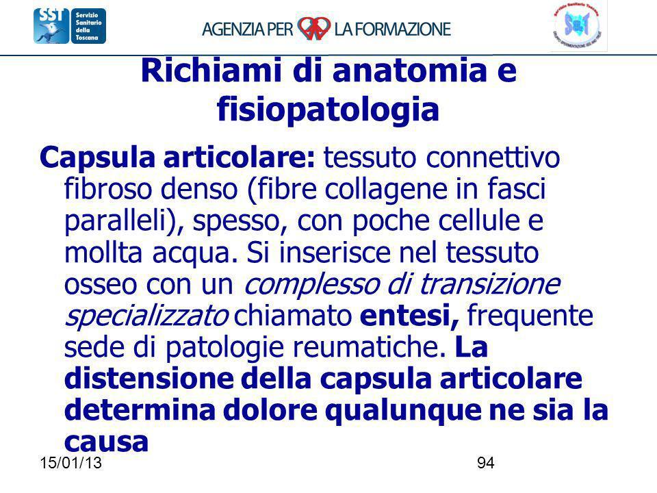 15/01/1394 Richiami di anatomia e fisiopatologia Capsula articolare: tessuto connettivo fibroso denso (fibre collagene in fasci paralleli), spesso, co