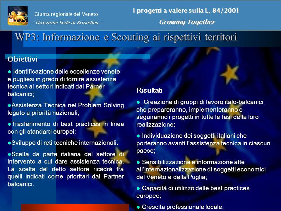WP3: Informazione e Scouting ai rispettivi territori Giunta regionale del Veneto - Direzione Sede di Bruxelles - I progetti a valere sulla L.