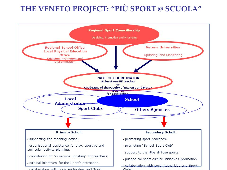 THE VENETO PROJECT: PIÙ SPORT @ SCUOLA Regional Sport Councillorship Devising, Promotion and Financing Regional School Office Local Physical Education