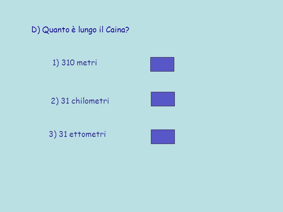 C) Perché il luogo dove nasce il Caina si chiama San Giovanni del Pantano? 1) Perché il Caina usciva spesso dal suo letto e allagava i campi 2) Perché