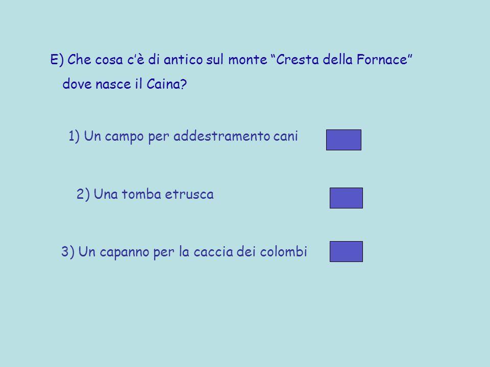 D) Quanto è lungo il Caina? 1) 310 metri 2) 31 chilometri 3) 31 ettometri