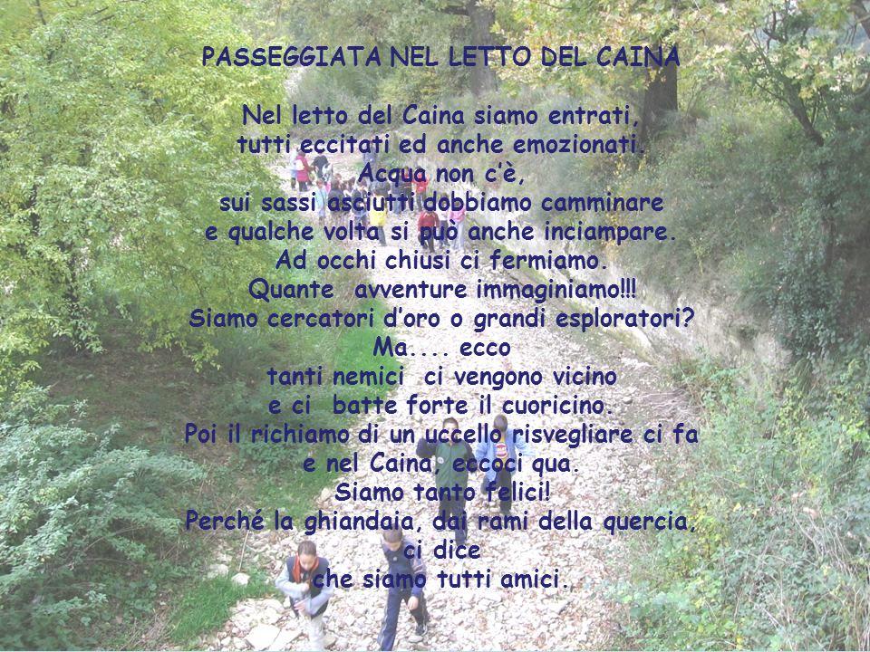 E) Che cosa cè di antico sul monte Cresta della Fornace dove nasce il Caina.