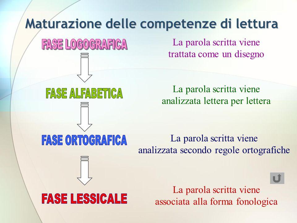 La parola scritta viene trattata come un disegno La parola scritta viene analizzata lettera per lettera La parola scritta viene analizzata secondo regole ortografiche La parola scritta viene associata alla forma fonologica Maturazione delle competenze di lettura