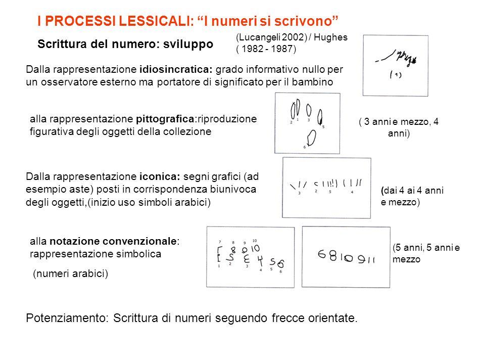 I PROCESSI LESSICALI: I numeri si scrivono Scrittura del numero: sviluppo alla rappresentazione pittografica:riproduzione figurativa degli oggetti del