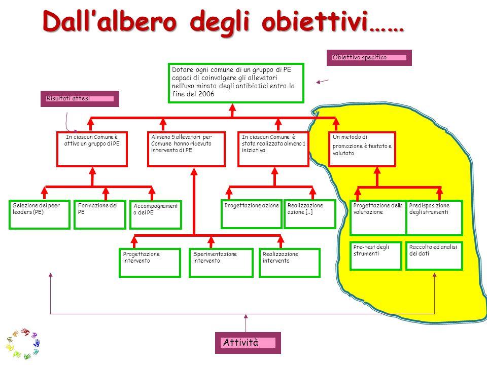 Allanalisi delle strategie Tappa 1: Dentro o fuori progetto.