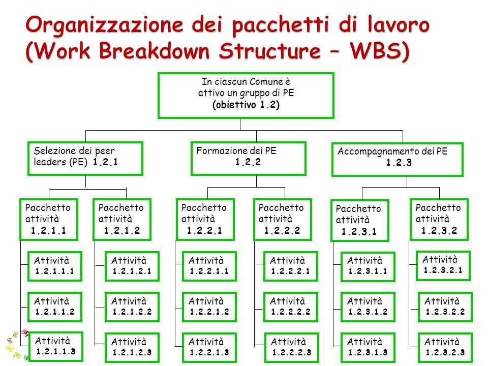 In ciascun Comune è attivo un gruppo di PE (obiettivo 1.2) Componente principale 1.2.1 Formazione dei PE 1.2.2 Accompagnamento dei PE 1.2.3 Pacchetto