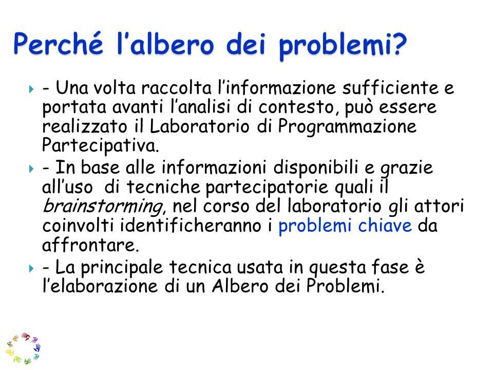 - Una volta raccolta linformazione sufficiente e portata avanti lanalisi di contesto, può essere realizzato il Laboratorio di Programmazione Partecipativa.