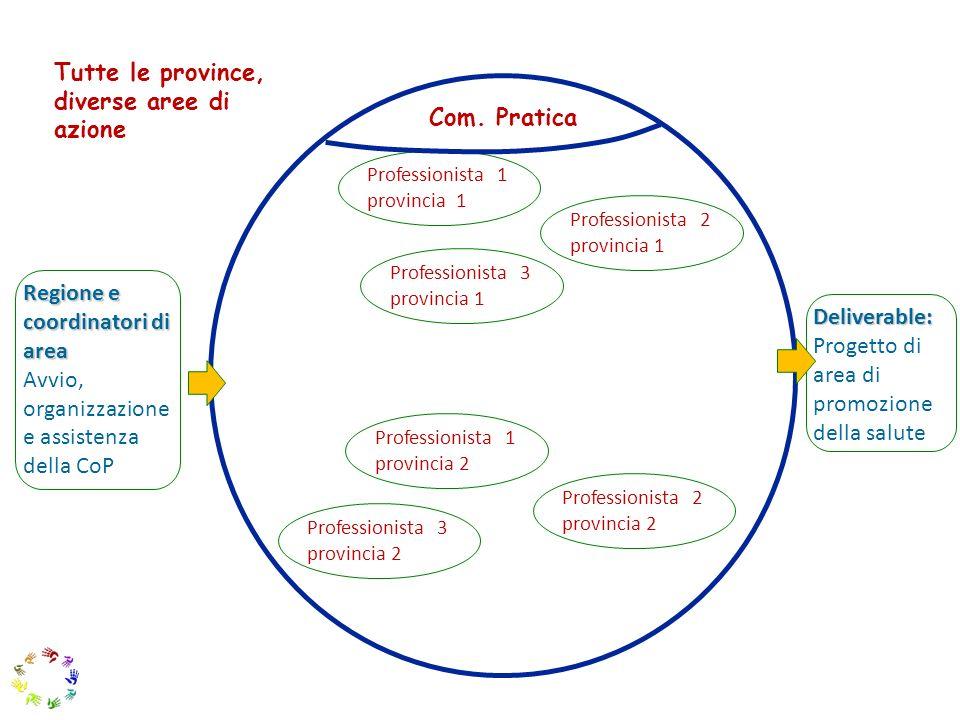16 Deliverable: Progetto di area di promozione della salute Professionista 1 provincia 1 Professionista 2 provincia 1 Professionista 1 provincia 2 Pro