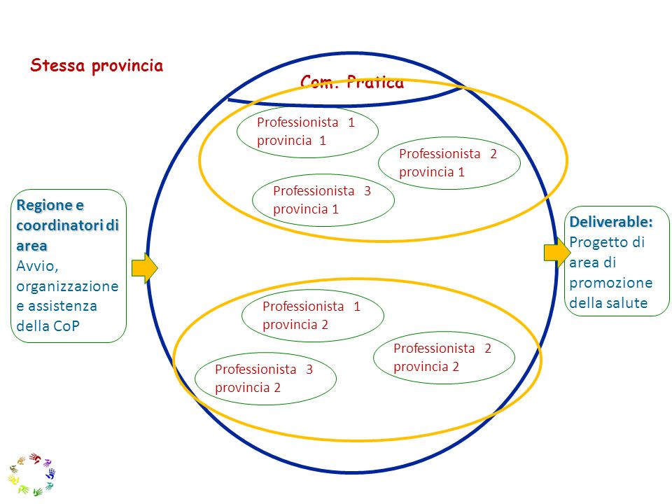 17 Deliverable: Progetto di area di promozione della salute Professionista 1 provincia 1 Professionista 2 provincia 1 Professionista 1 provincia 2 Pro