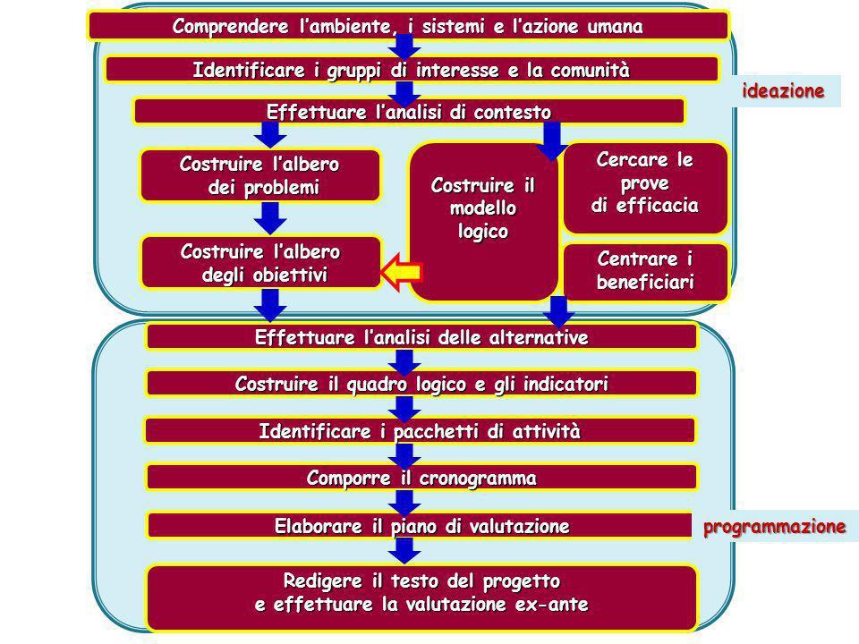 Il modello esplicativo teorico è costituito sul rapporto causa- effetto: ogni freccetta mostra che lelemento contenuto in una casella è associato causalmente con lelemento dellaltra casella in cui finisce la freccia