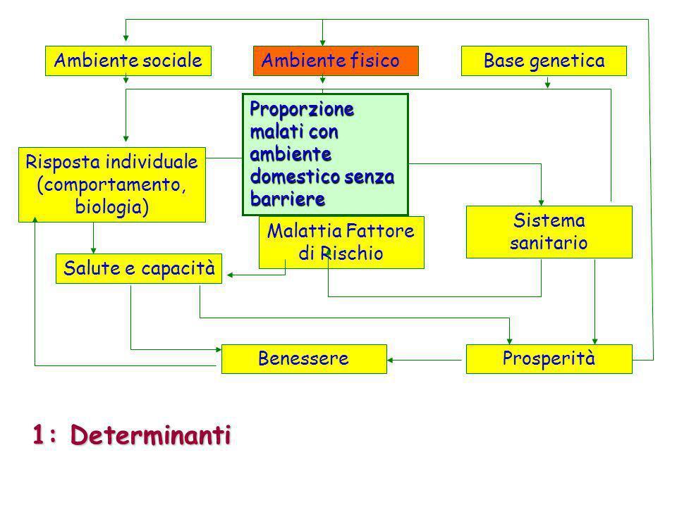 Ambiente socialeAmbiente fisicoBase genetica Sistema sanitario ProsperitàBenessere Salute e capacità Malattia Fattore di Rischio Risposta individuale