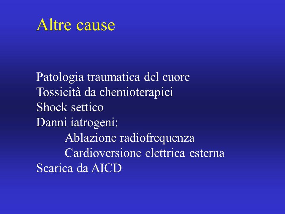 Altre cause Patologia traumatica del cuore Tossicità da chemioterapici Shock settico Danni iatrogeni: Ablazione radiofrequenza Cardioversione elettric