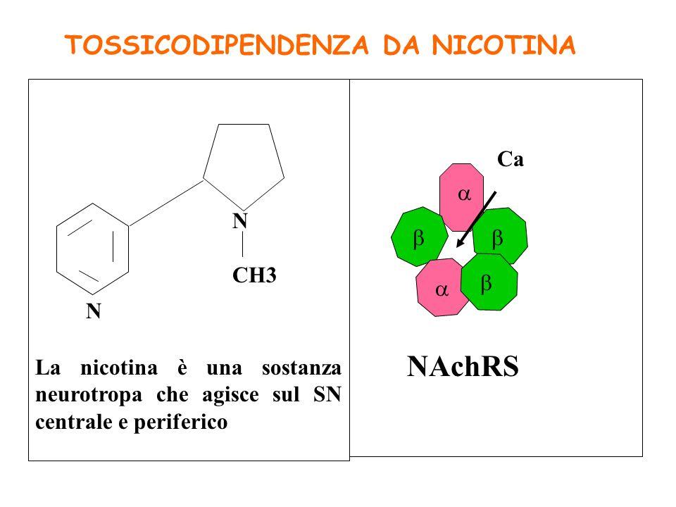 DSM IV ---- La dipendenza da sostanze è un disturbo psichiatrico con mancato controllo verso una sostanza A Uso quotidiano di nicotina per diverse set