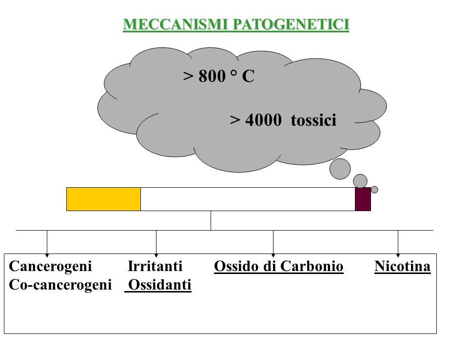 FUMO E RISCHIO CARDIOVASCOLARE Il fumo di tabacco è un potente fattore indipendente di rischio per Cardiopatia ischemica Morte improvvisa Arteriopatia