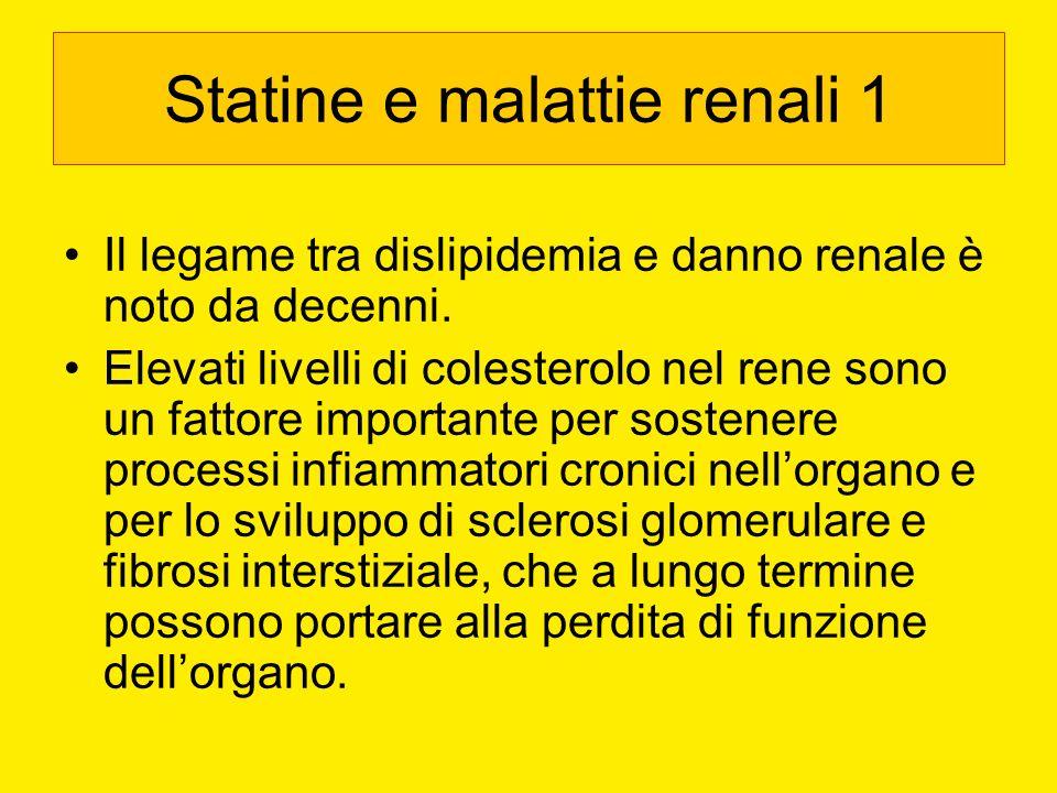 Statine e malattie renali 1 Il legame tra dislipidemia e danno renale è noto da decenni. Elevati livelli di colesterolo nel rene sono un fattore impor