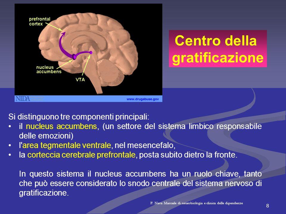 8 Si distinguono tre componenti principali: il nucleus accumbens, (un settore del sistema limbico responsabile delle emozioni) l'area tegmentale ventr