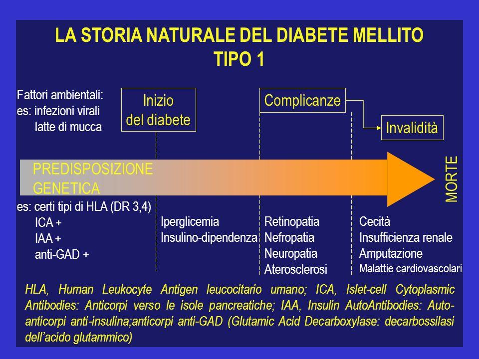 LA STORIA NATURALE DEL DIABETE MELLITO TIPO 1 MORTE Inizio del diabete Complicanze Invalidità Fattori ambientali: es: infezioni virali latte di mucca es: certi tipi di HLA (DR 3,4) ICA + IAA + anti-GAD + Iperglicemia Insulino-dipendenza Retinopatia Nefropatia Neuropatia Aterosclerosi Cecità Insufficienza renale Amputazione Malattie cardiovascolari HLA, Human Leukocyte Antigen leucocitario umano; ICA, Islet-cell Cytoplasmic Antibodies: Anticorpi verso le isole pancreatiche; IAA, Insulin AutoAntibodies: Auto- anticorpi anti-insulina;anticorpi anti-GAD (Glutamic Acid Decarboxylase: decarbossilasi dellacido glutammico) PREDISPOSIZIONE GENETICA